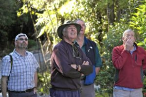 Greg ZL2BZH, Graeme ZL2APV, Ian ZL2IH & Frank ZL2BR watching crane remove wind turbine